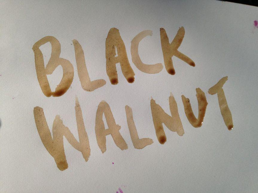 black-walnut-ink