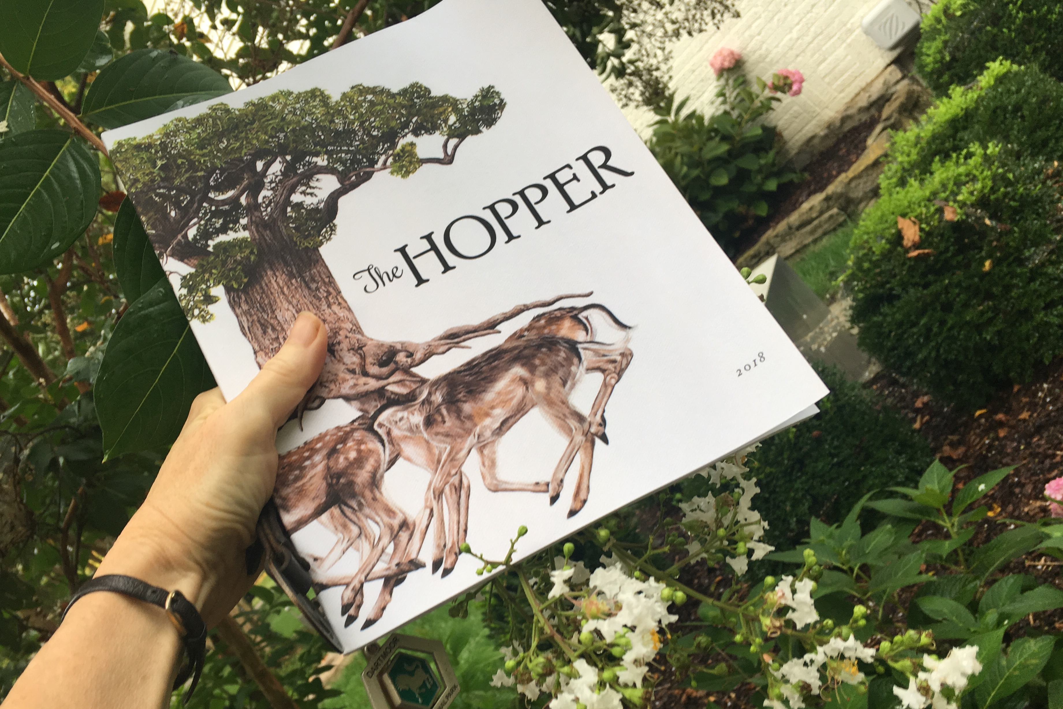 HopperWhiteTree